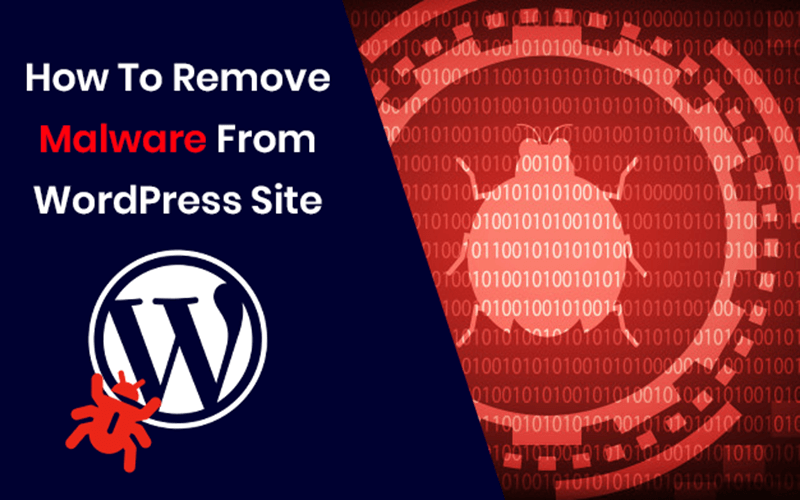 How to Remove Malware From WordPress Site